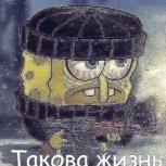 Shumeiko Nikolas